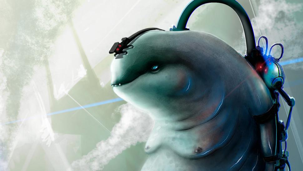 dolphinus02